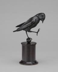 Image for A Bird