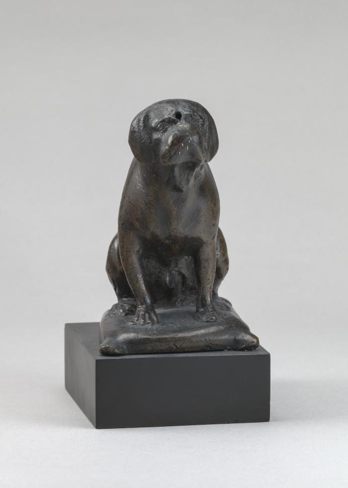 Image for A Dog