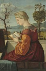 Image for The Virgin Reading