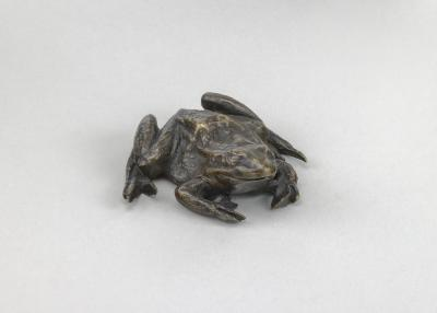 Image for A Toad
