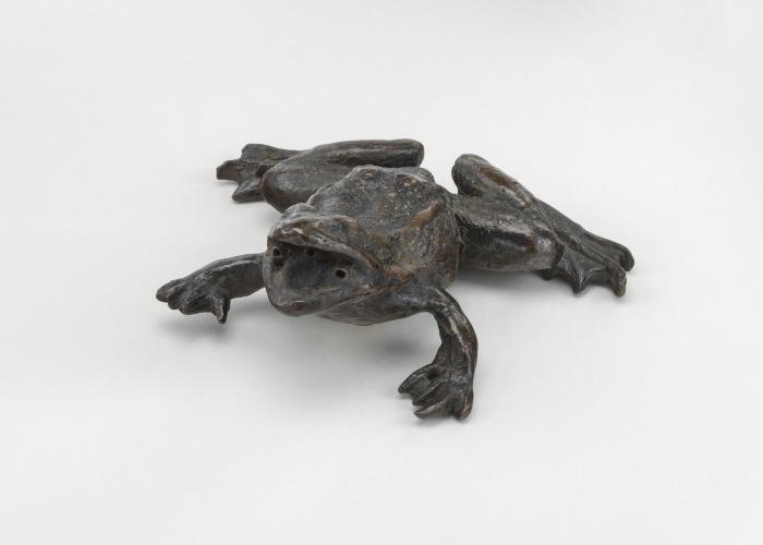 Image for A Frog