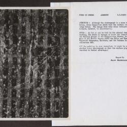 Image for K0307 - Alan Burroughs report, circa 1930s-1940s