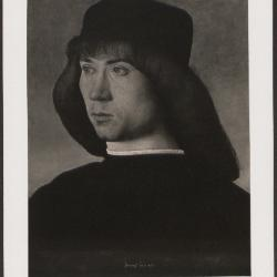 Image for K0331 - Expert opinion by Perkins, circa 1920s-1940s
