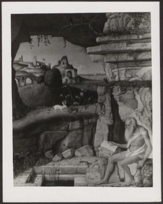Image for K0406 - Expert opinion by Fiocco, 1938
