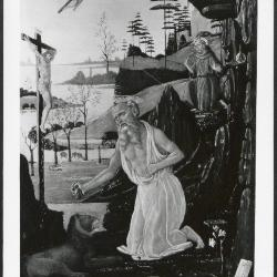 Image for K1158 - Photograph, circa 1930s-1960s