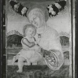 Image for K1653 - Photograph, circa 1930s-1960s