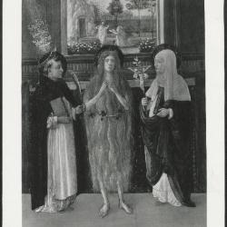 Image for K1724 - Photograph, circa 1930s-1960s