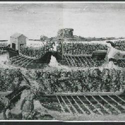 Image for K0438 - Photograph, circa 1930s-1960s