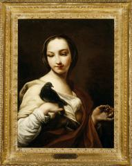 Image for Girl with Black Dove