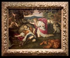 Image for Venus Lamenting the Death of Adonis