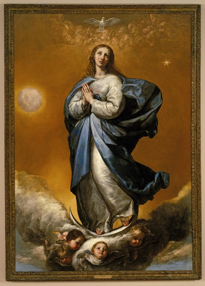 Image for The Immaculate Conception