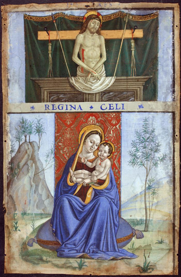 Image for Madonna and Child and the Man of Sorrows