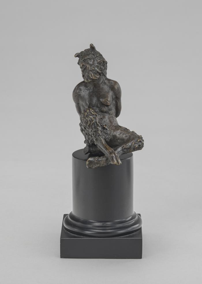 Image for Bound Satyr