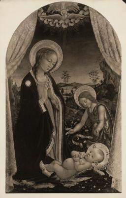 Image for Madonna in Adoration