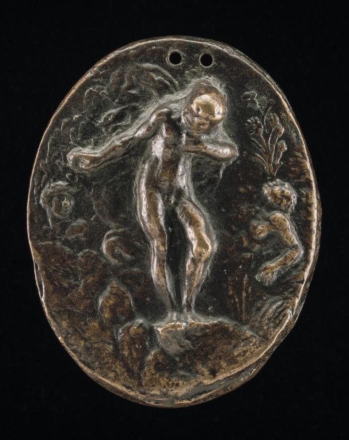 Image for Narcissus