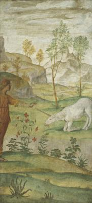 Image for Procris and the Unicorn