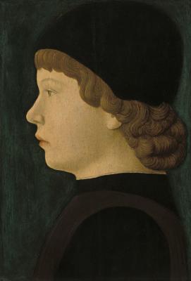 Image for Profile Portrait of a Boy