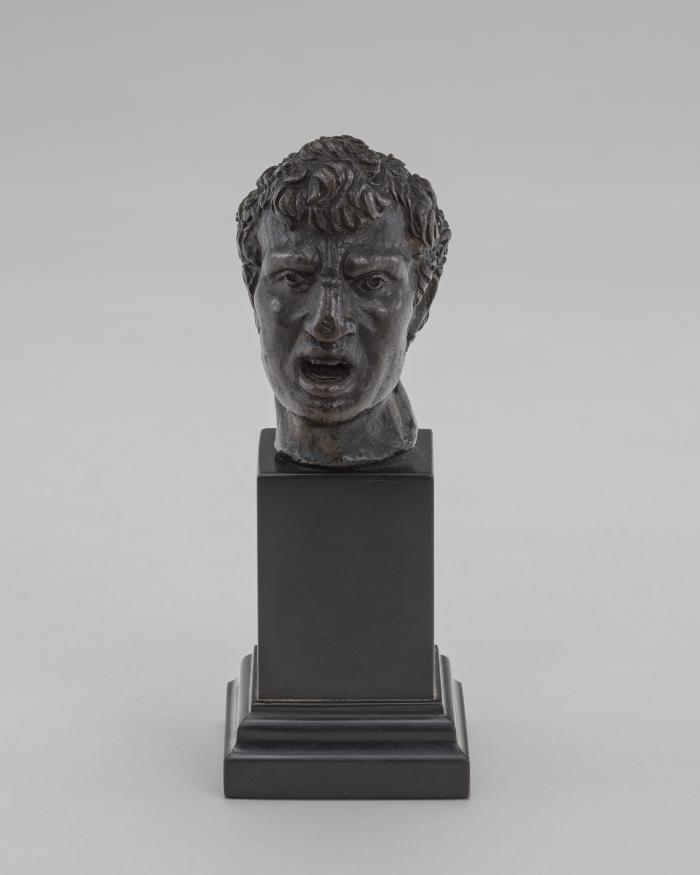 Image for The Bust of a Man (Vulcan?)
